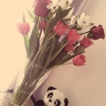 tumblr m3scd6G6IP1ruo04eo1 1280 150x150 Valentines Day