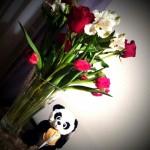 tumblr m3scd6G6IP1ruo04eo3 1280 150x150 Valentines Day