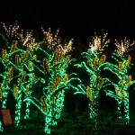 tumblr ng4zaupIHm1ruo04eo8 1280 150x150 Garden Lights