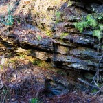 tumblr nl7u4u8Y2C1ruo04eo4 1280 150x150 Silver Comet Trail