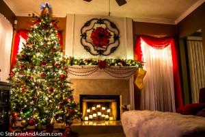 DSC 0225 300x200 This Christmas